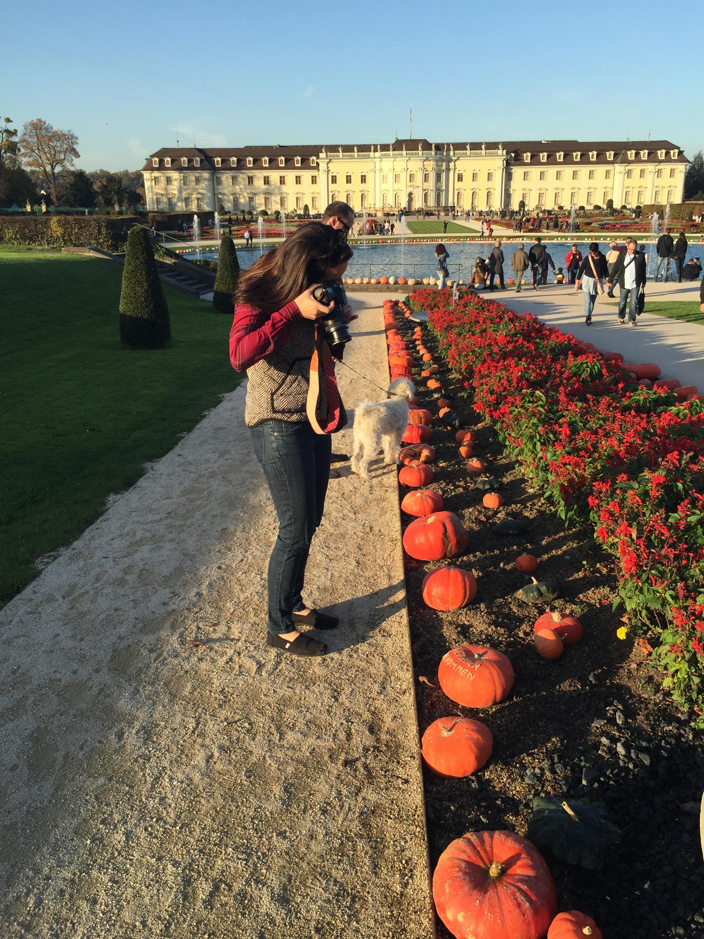 Ludwigsburg Pumpkin Festival via Wayfaring With Wagner