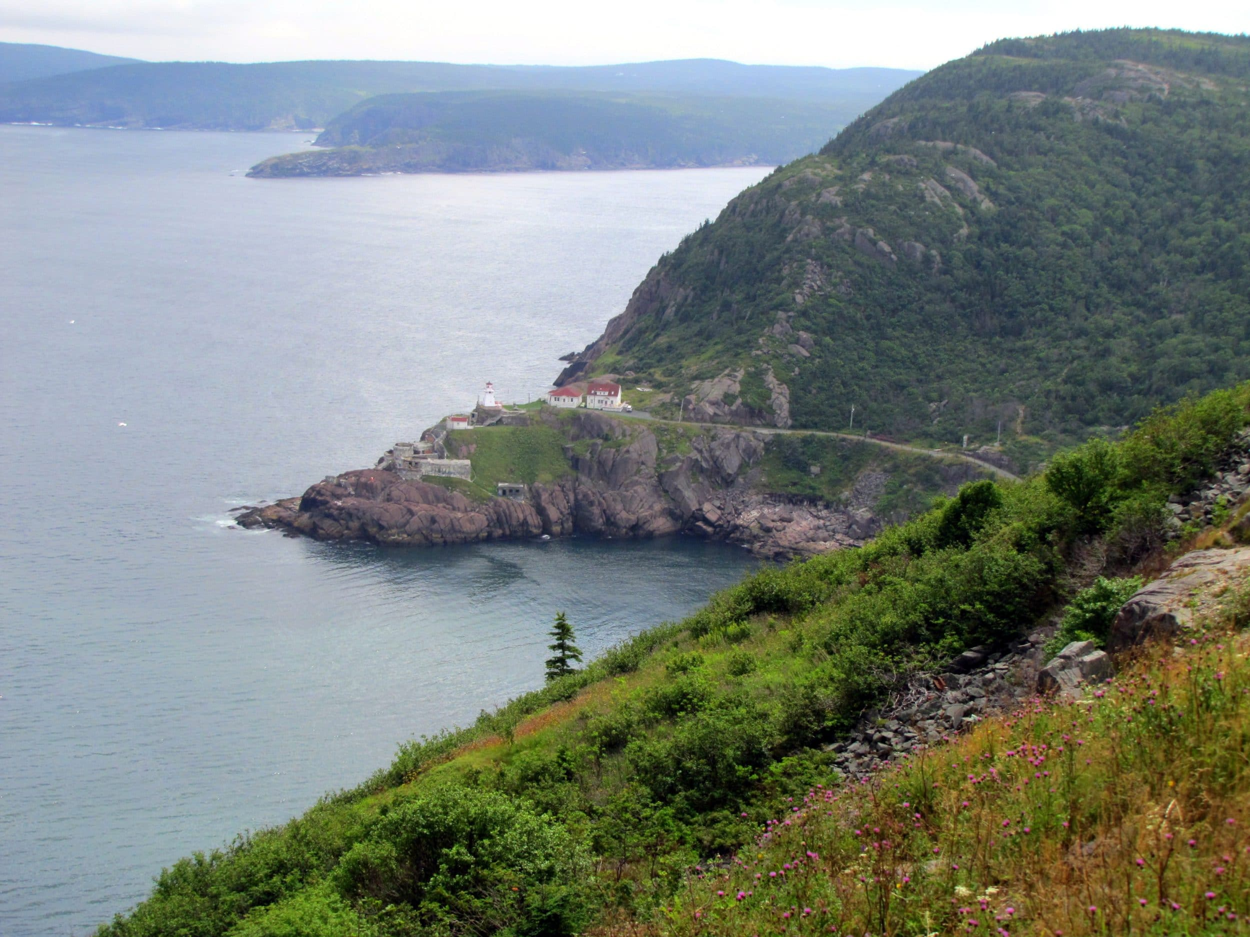 Newfoundland, Canada via Wayfaring With Wagner
