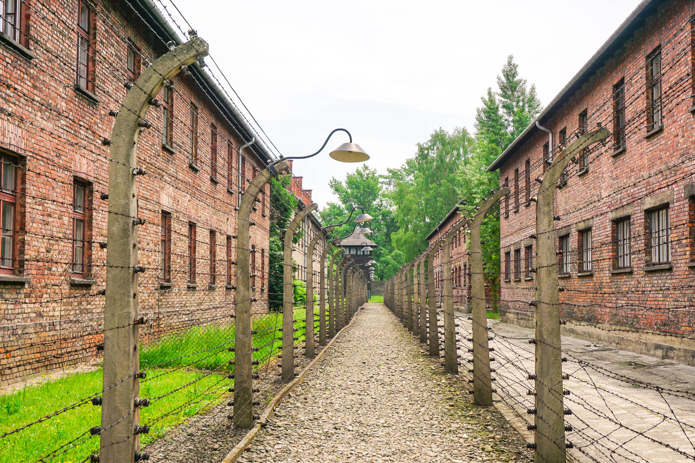 Reflections on Auschwitz-Birkenau Concentration Camps via Wayfaring With Wagner