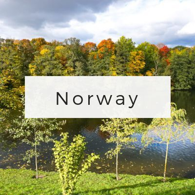 Norway Travel Page via Wayfaring With Wagner
